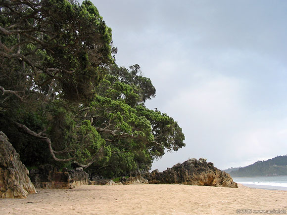 Hot Water Beach, New Zealand - Aotearoa 2004/05