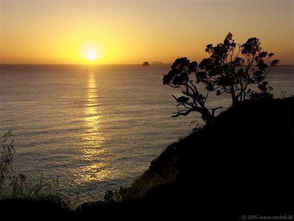 Sonnenaufgang auf der Coromandel Halbinsel, New Zealand - Aotearoa 2004/05
