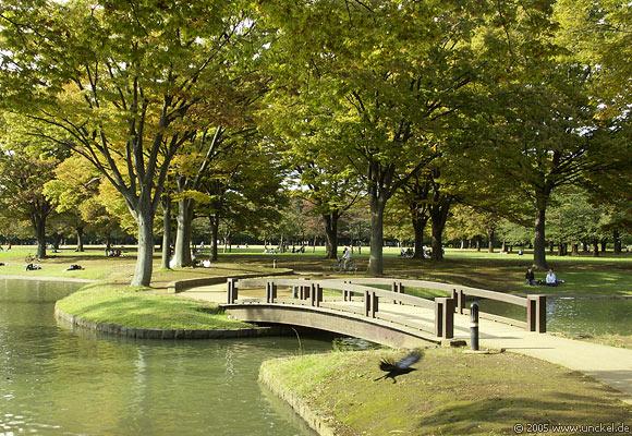 Yoyogi Park, Tokyo - 東京 2005